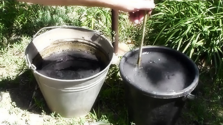 Уход за клубникой и подготовка зиме: обрезка, полив, мульчирование